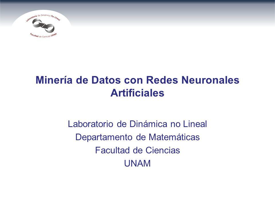 Minería de Datos con Redes Neuronales Artificiales