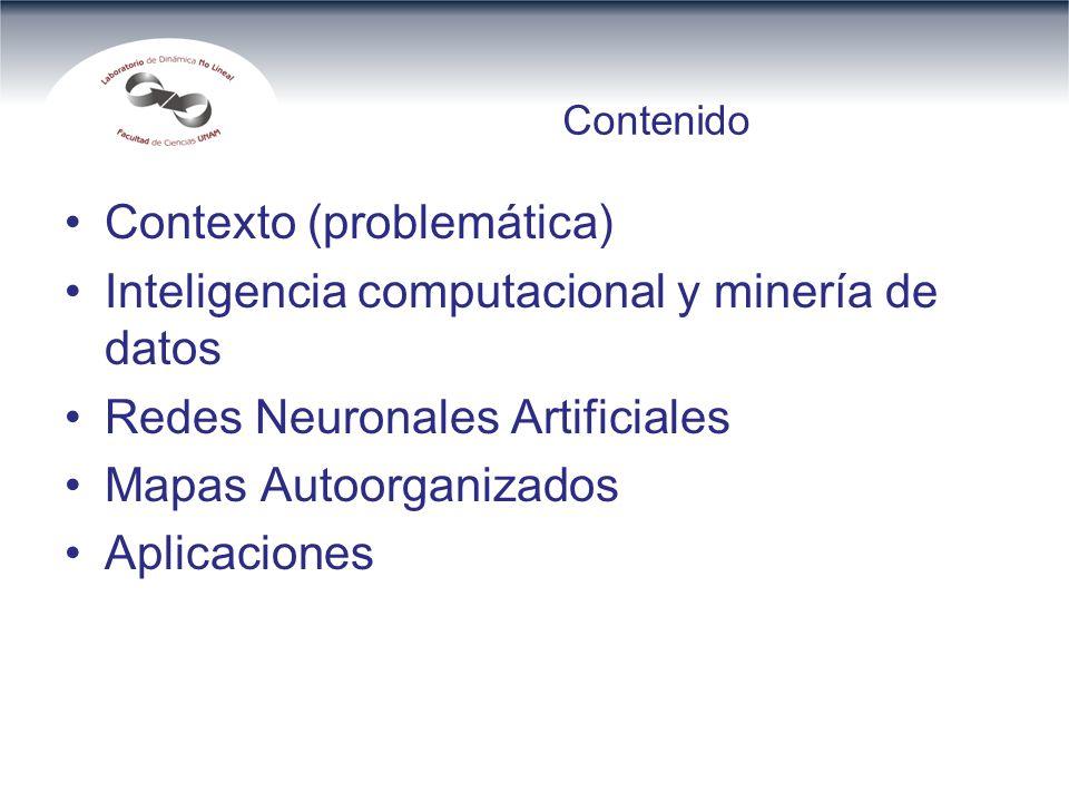 Contexto (problemática) Inteligencia computacional y minería de datos