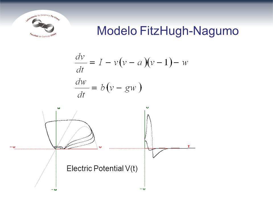Modelo FitzHugh-Nagumo