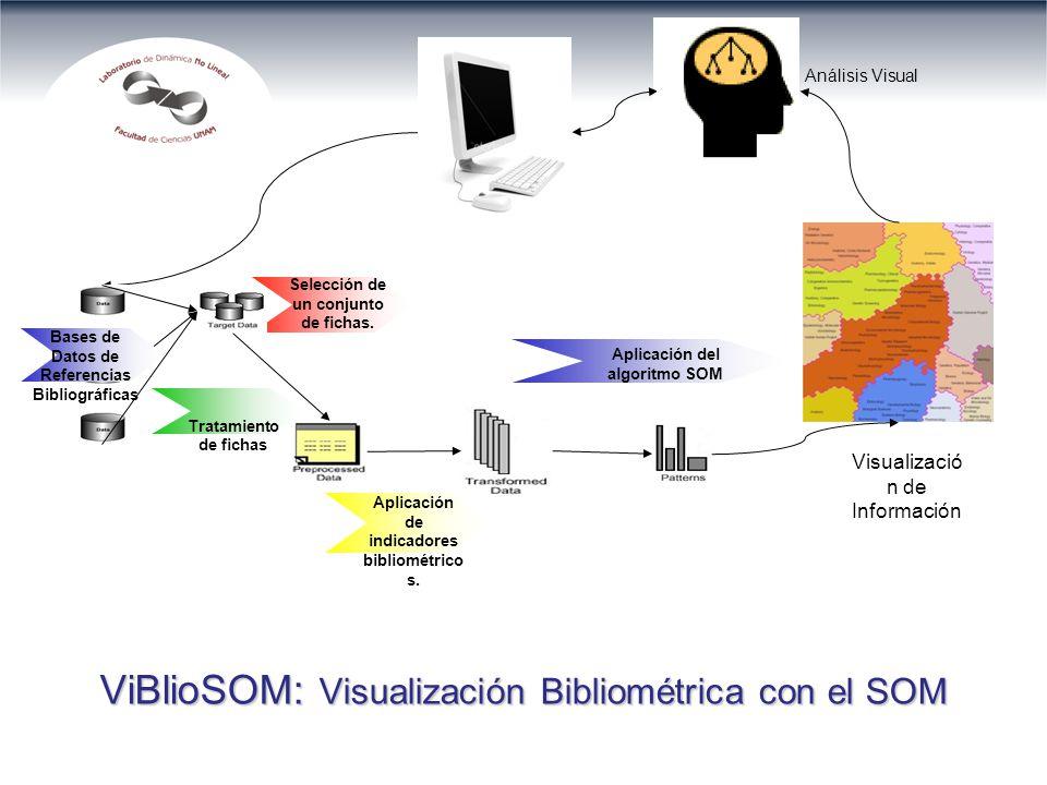 ViBlioSOM: Visualización Bibliométrica con el SOM