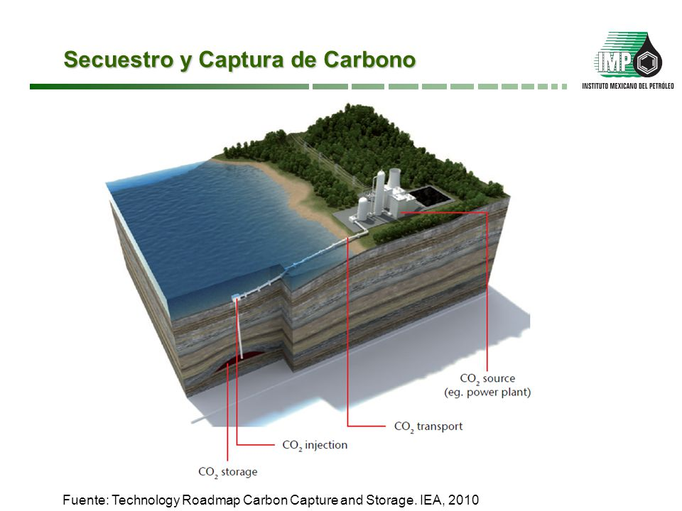 Secuestro y Captura de Carbono
