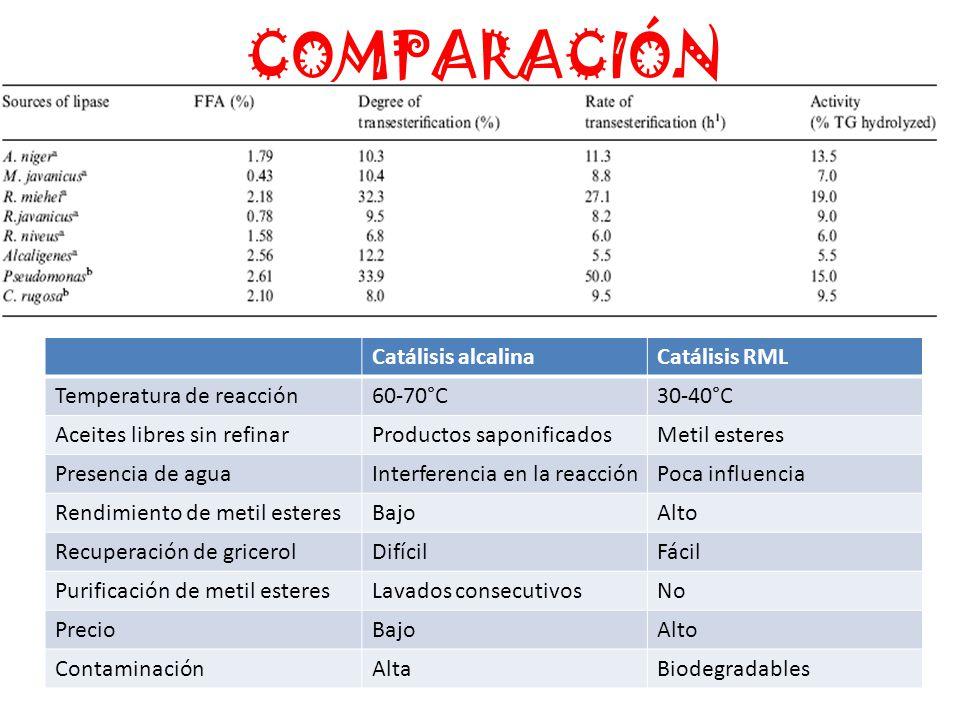COMPARACIÓN Catálisis alcalina Catálisis RML Temperatura de reacción