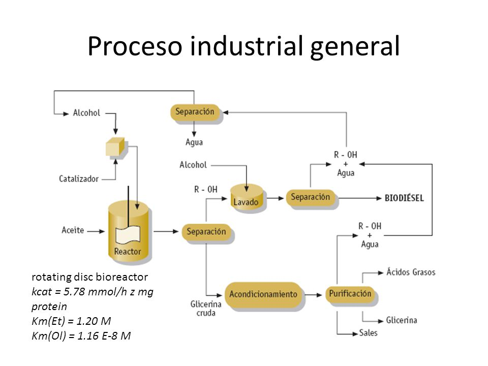 Proceso industrial general