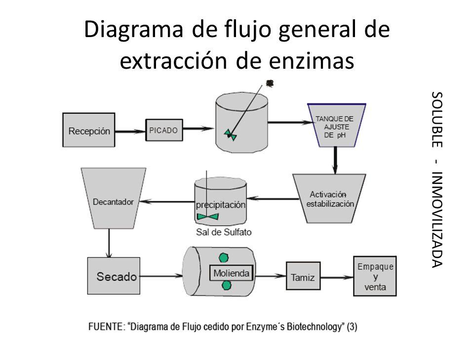 Diagrama de flujo general de extracción de enzimas