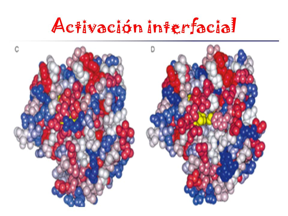 Activación interfacial