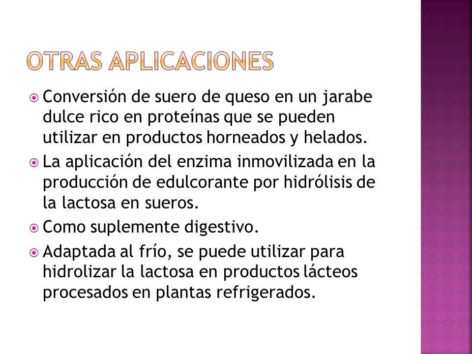 Otras aplicaciones Conversión de suero de queso en un jarabe dulce rico en proteínas que se pueden utilizar en productos horneados y helados.