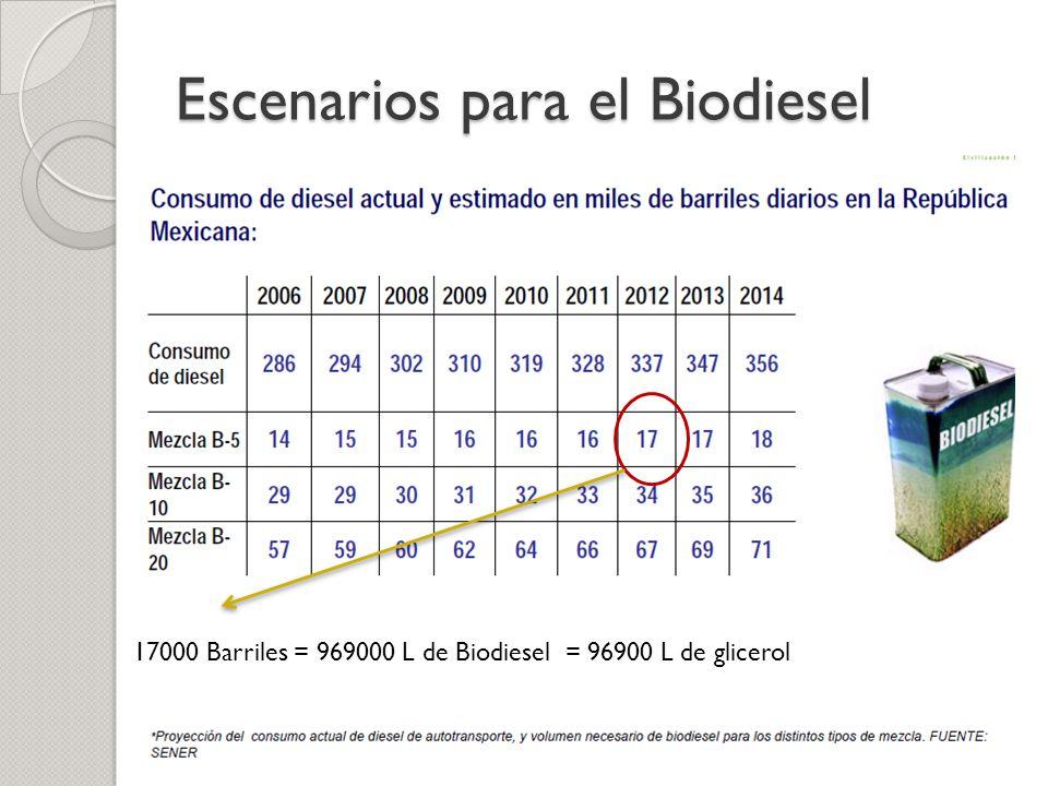 Escenarios para el Biodiesel