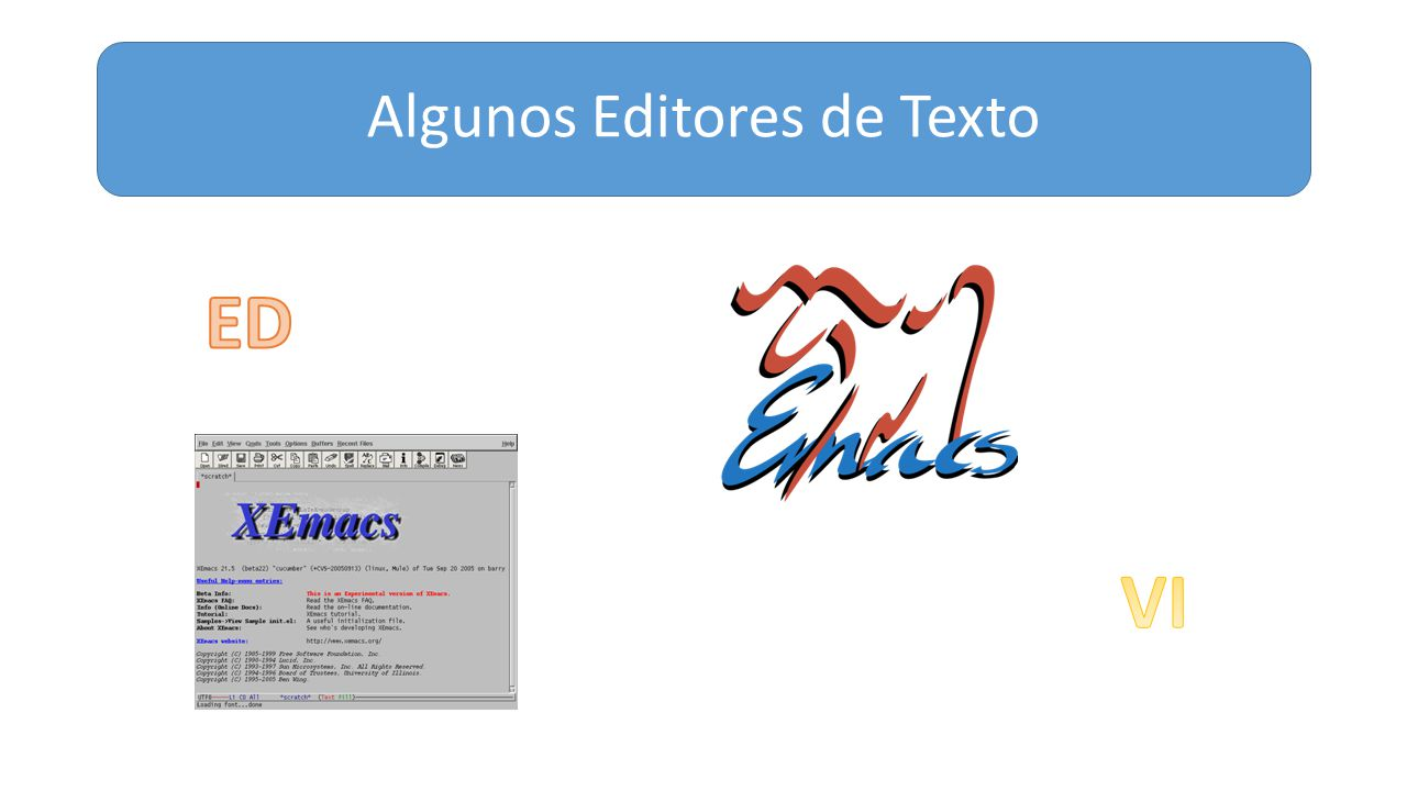 Algunos Editores de Texto
