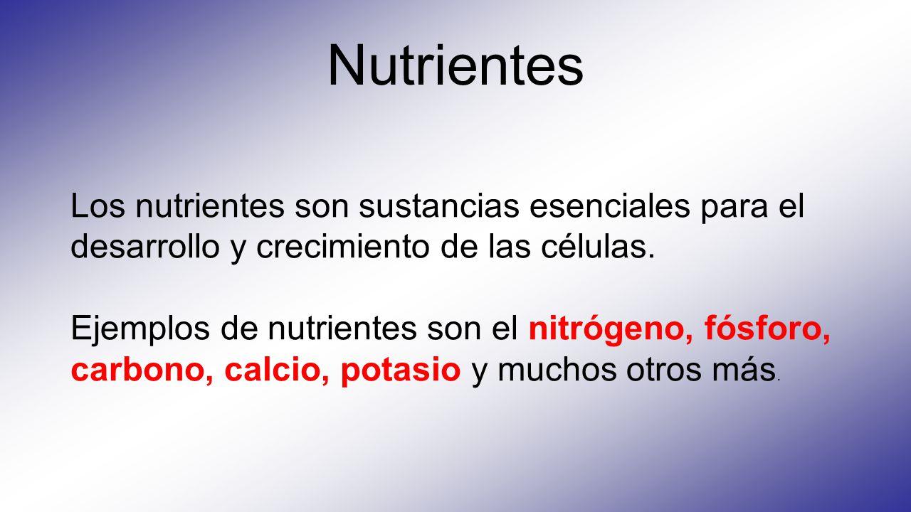 Nutrientes Los nutrientes son sustancias esenciales para el desarrollo y crecimiento de las células.