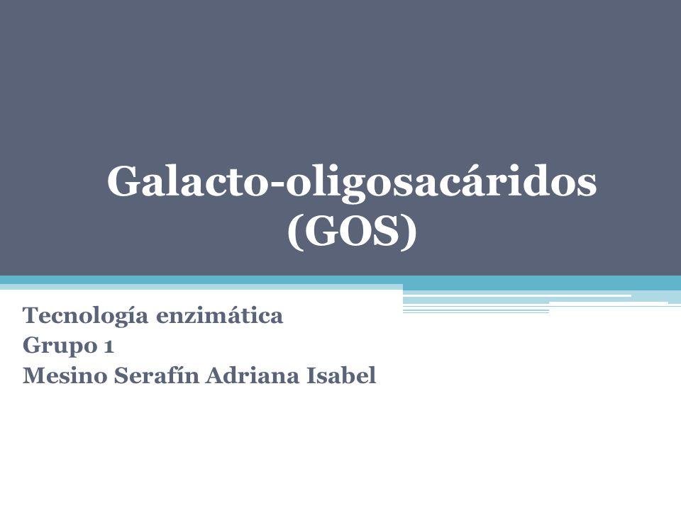 Galacto-oligosacáridos (GOS)