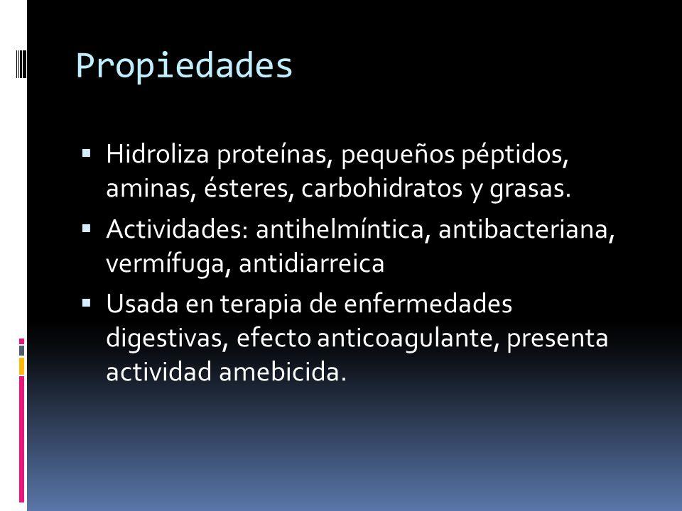 Propiedades Hidroliza proteínas, pequeños péptidos, aminas, ésteres, carbohidratos y grasas.