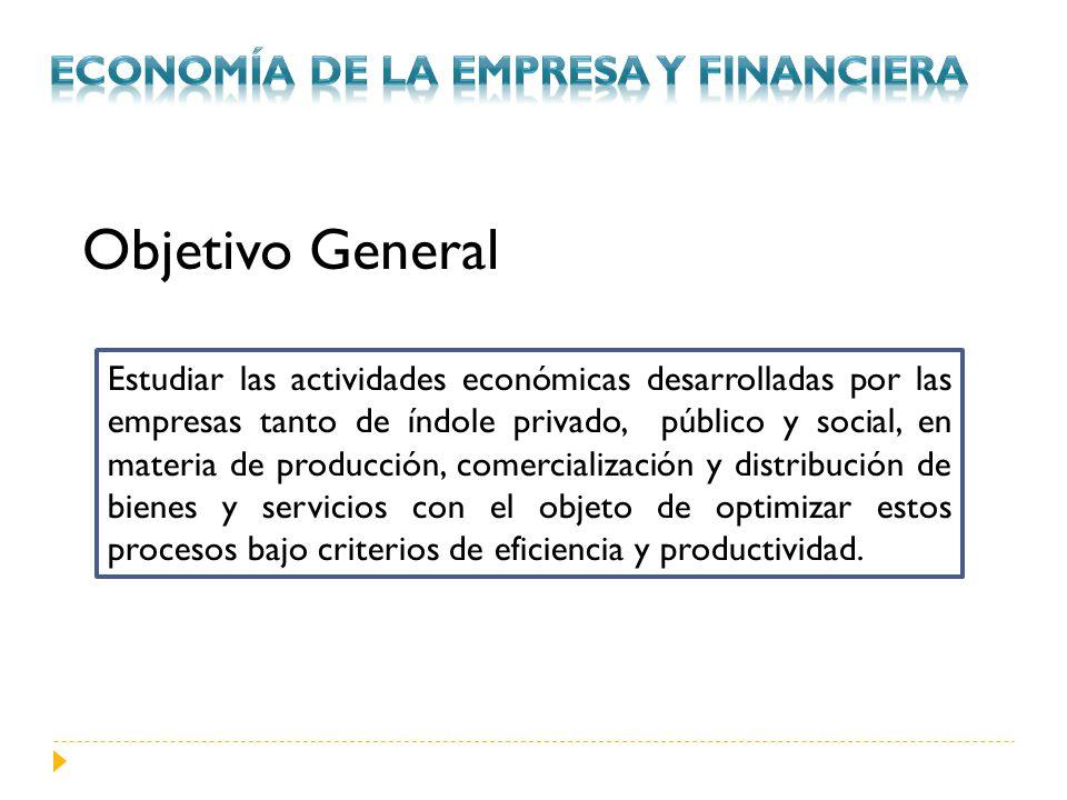 Objetivo General Economía de la empresa y financiera