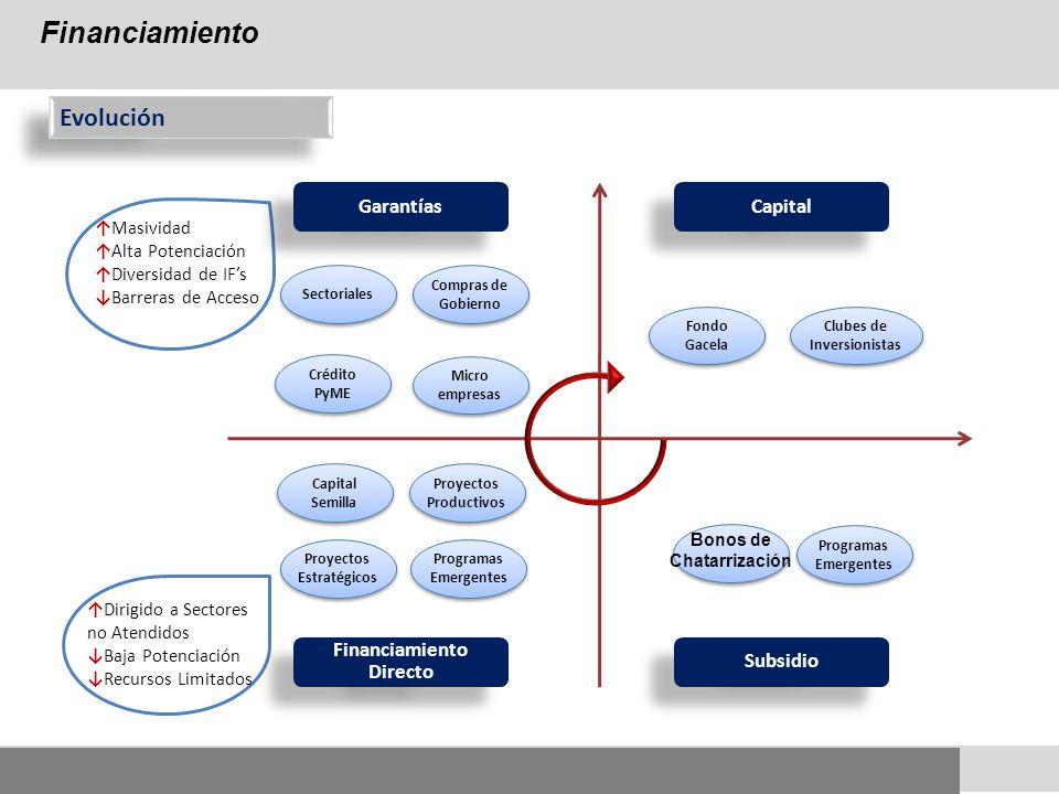 Financiamiento Evolución Garantías Capital Financiamiento Directo