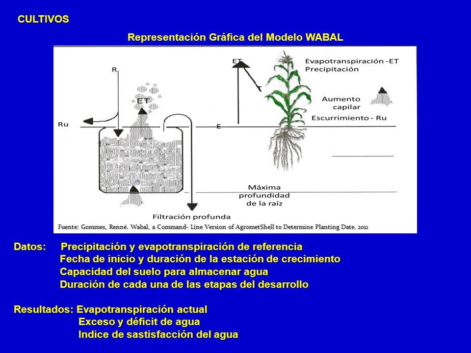 Representación Gráfica del Modelo WABAL