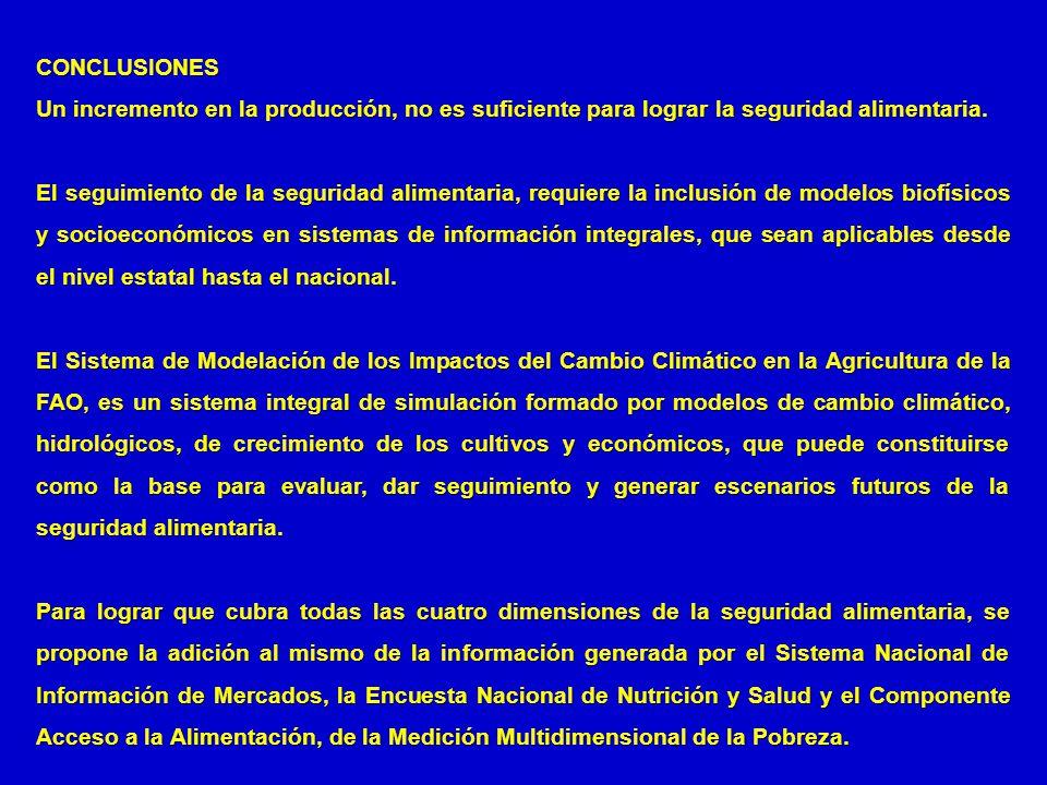 CONCLUSIONES Un incremento en la producción, no es suficiente para lograr la seguridad alimentaria.
