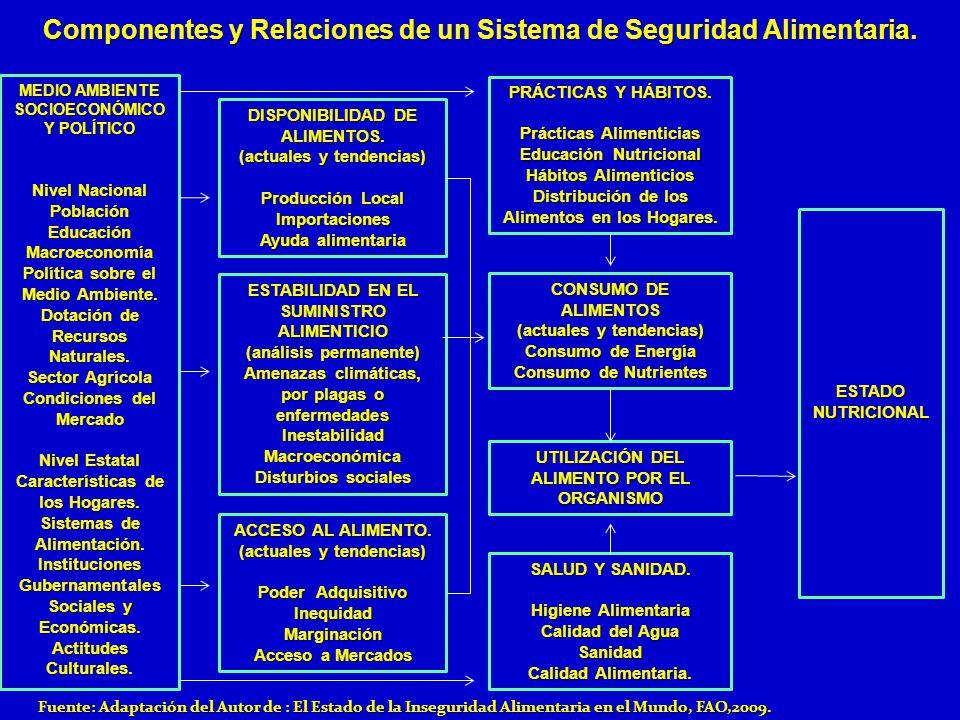 Componentes y Relaciones de un Sistema de Seguridad Alimentaria.