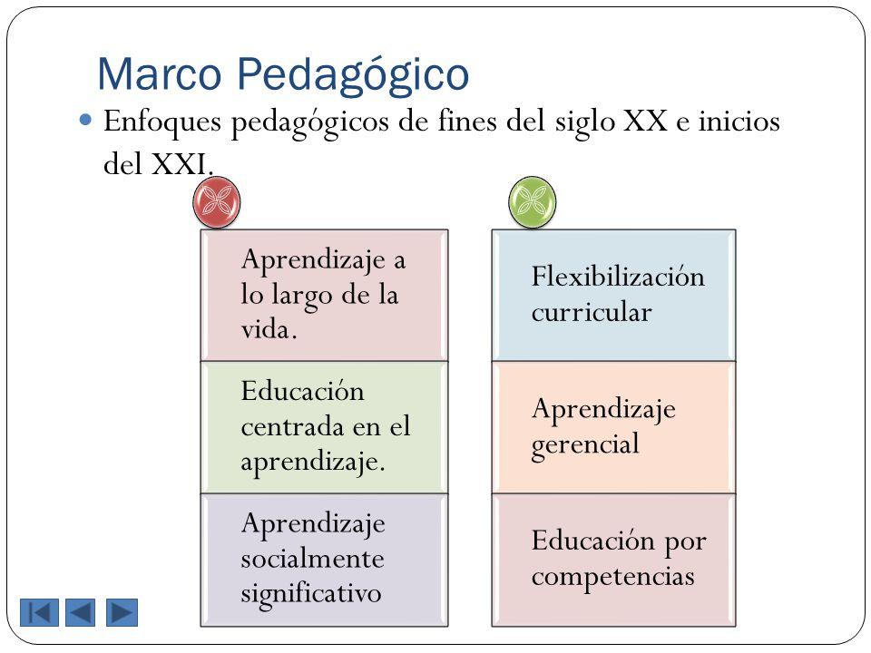Marco Pedagógico Enfoques pedagógicos de fines del siglo XX e inicios del XXI.  Aprendizaje a lo largo de la vida.