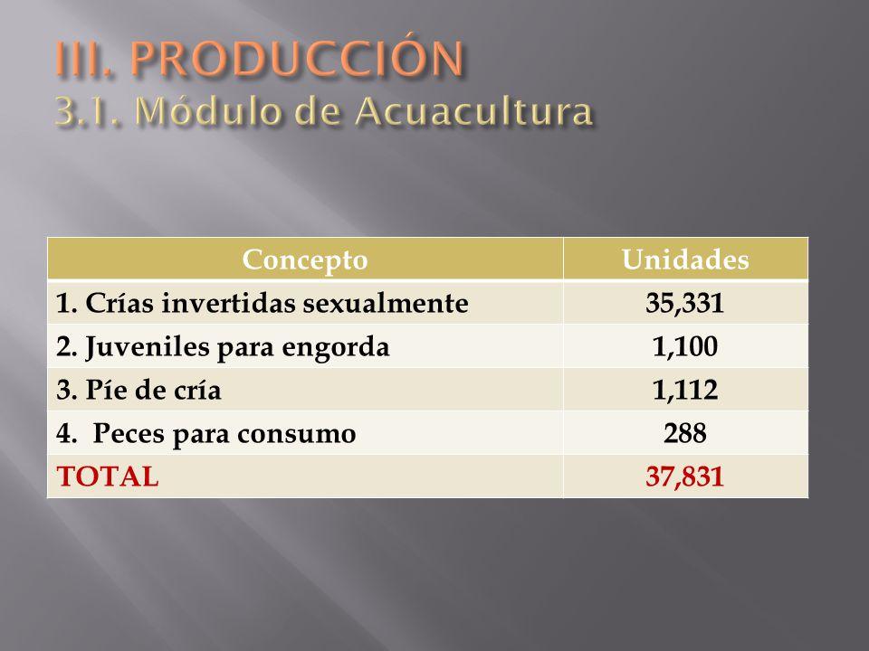 III. PRODUCCIÓN 3.1. Módulo de Acuacultura