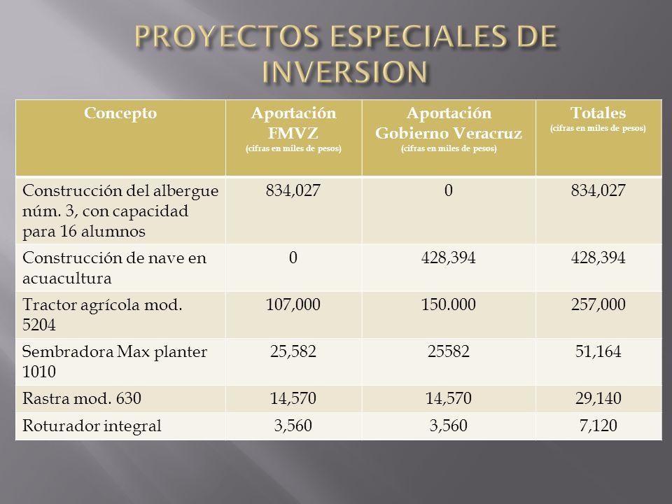 PROYECTOS ESPECIALES DE INVERSION