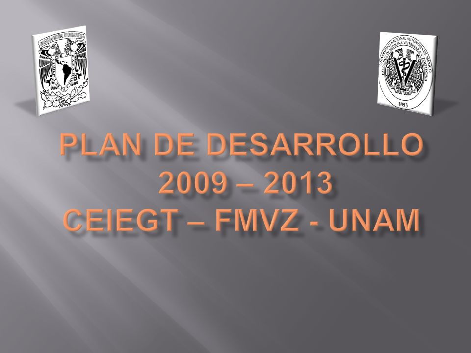 PLAN DE DESARROLLO 2009 – 2013 CEIEGT – FMVZ - UNAM