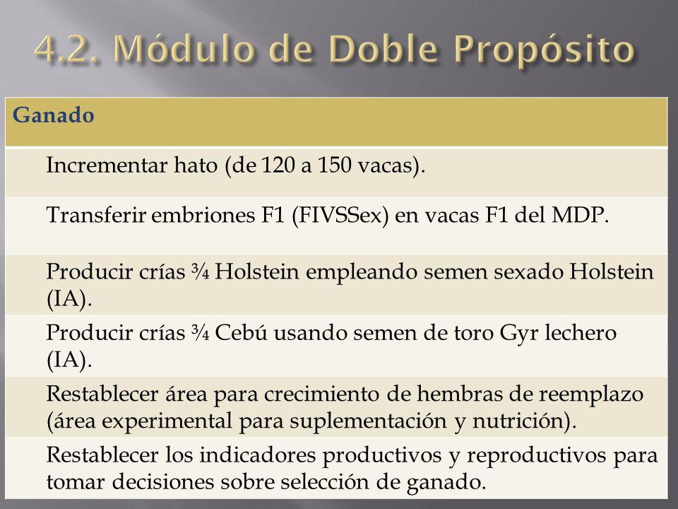 4.2. Módulo de Doble Propósito