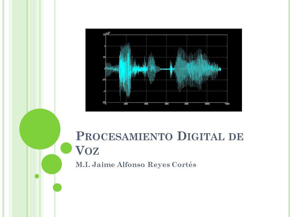 Procesamiento Digital de Voz