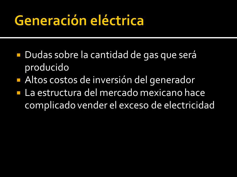 Generación eléctrica Dudas sobre la cantidad de gas que será producido