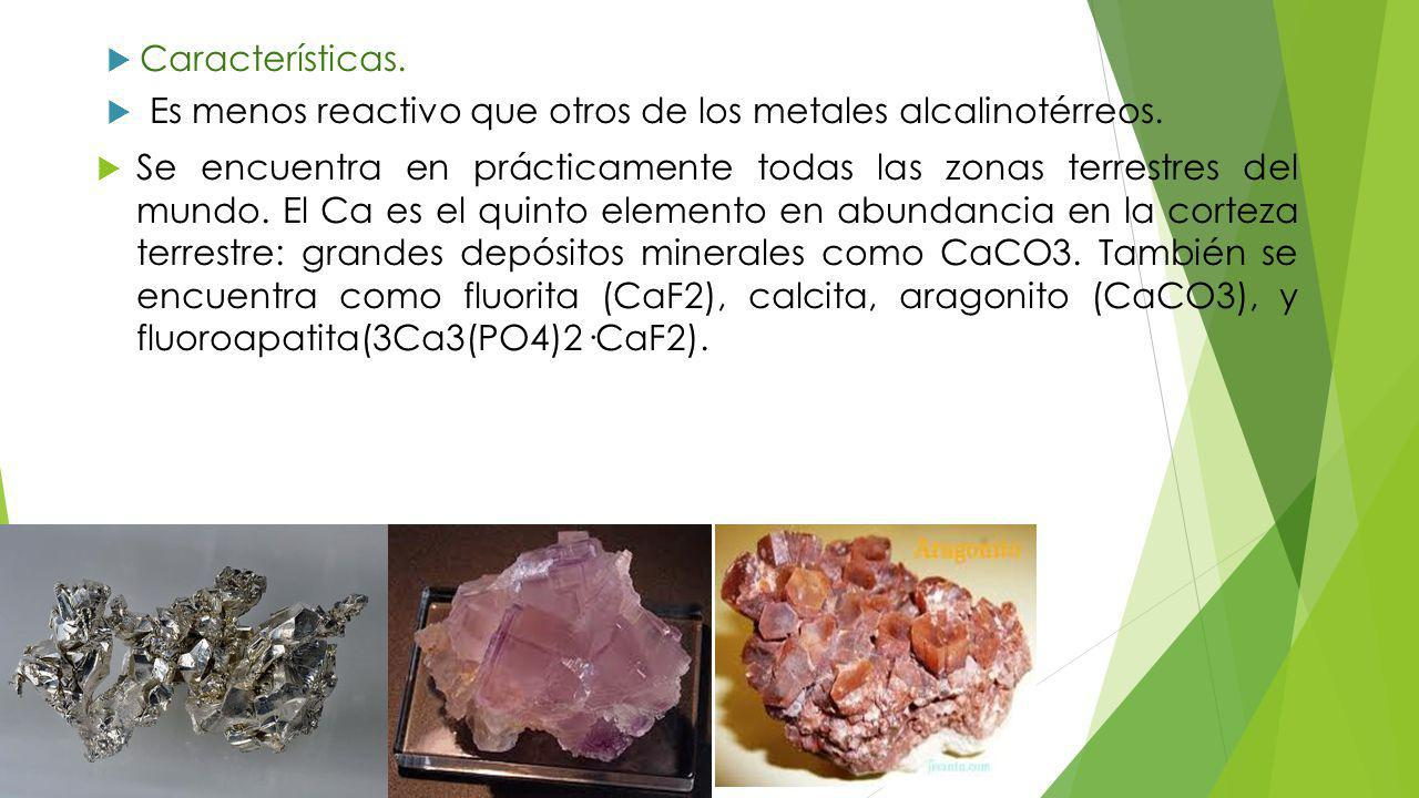 Características. Es menos reactivo que otros de los metales alcalinotérreos.