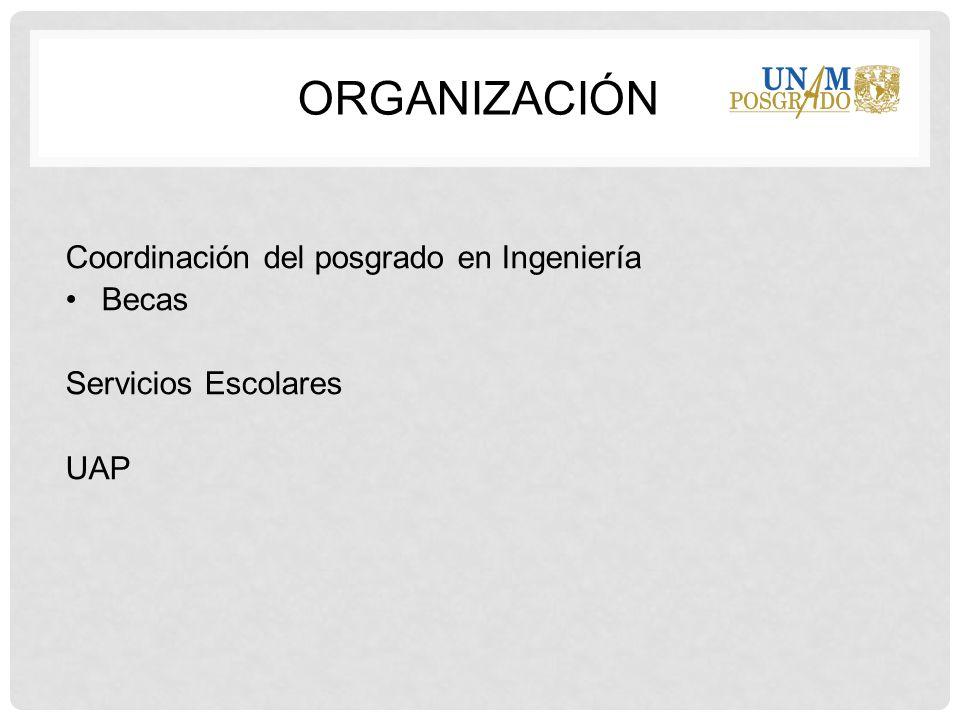 Organización Coordinación del posgrado en Ingeniería Becas