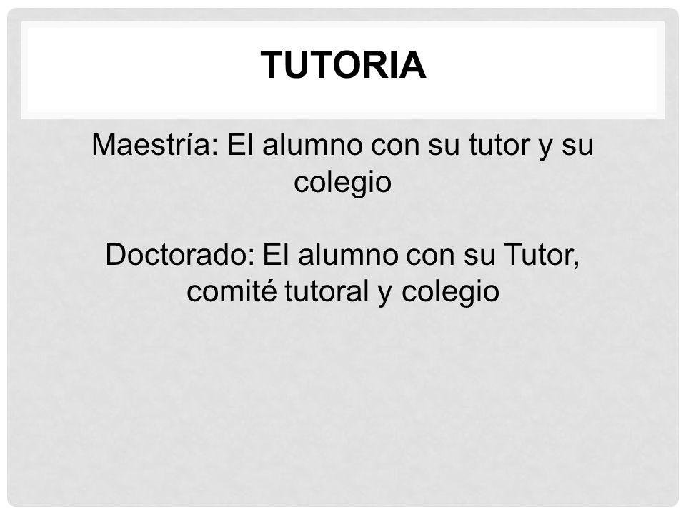 Tutoria Maestría: El alumno con su tutor y su colegio