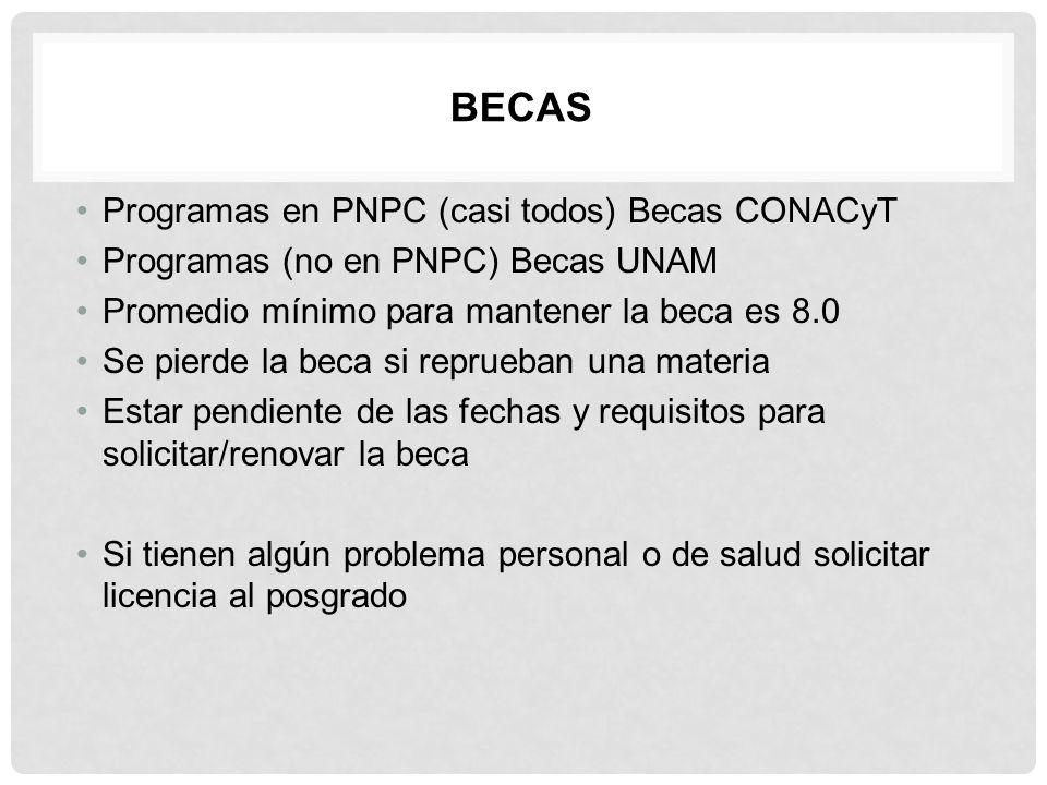 Becas Programas en PNPC (casi todos) Becas CONACyT