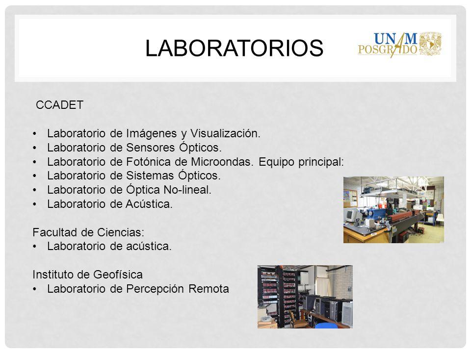 LaboratorioS CCADET Laboratorio de Imágenes y Visualización.