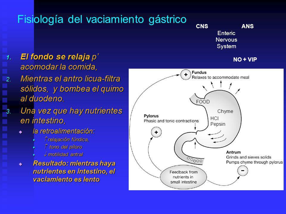 Fisiología del vaciamiento gástrico