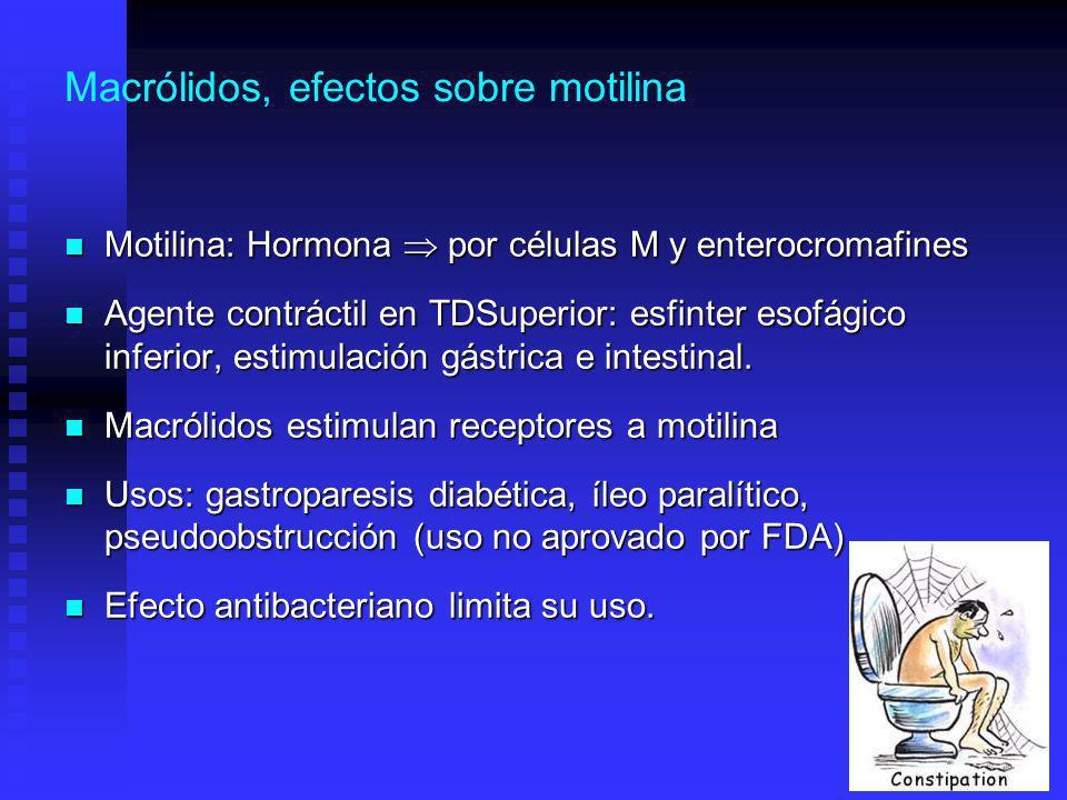 Macrólidos, efectos sobre motilina
