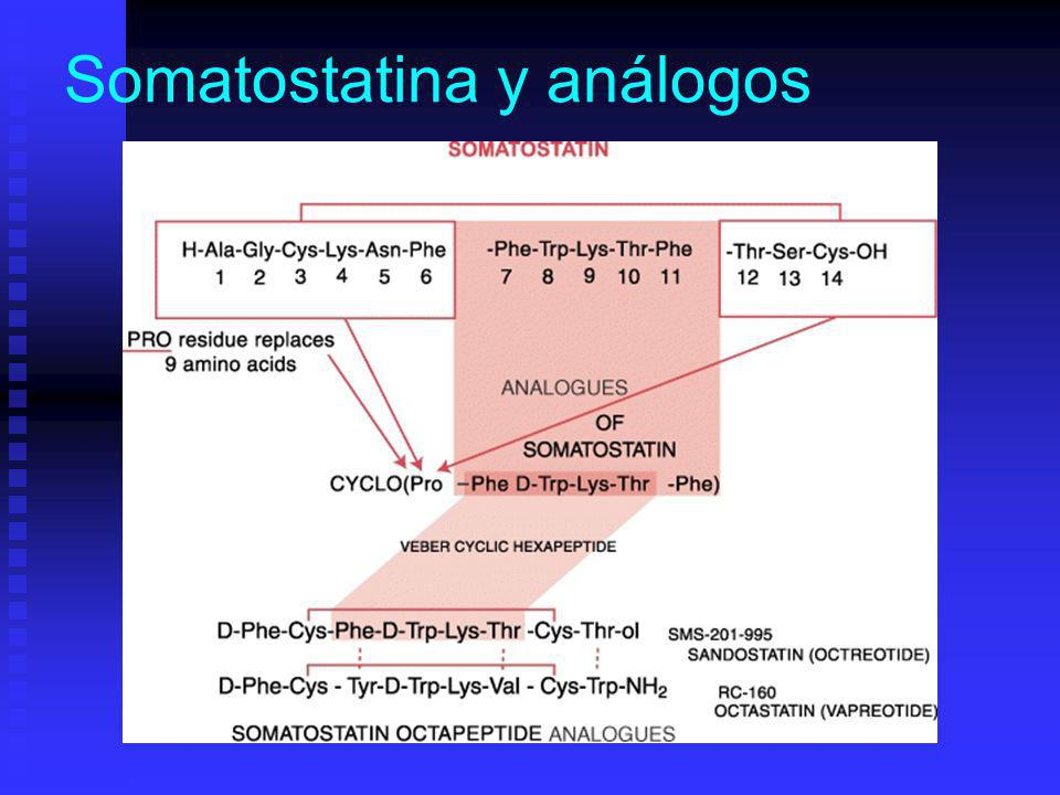 Somatostatina y análogos