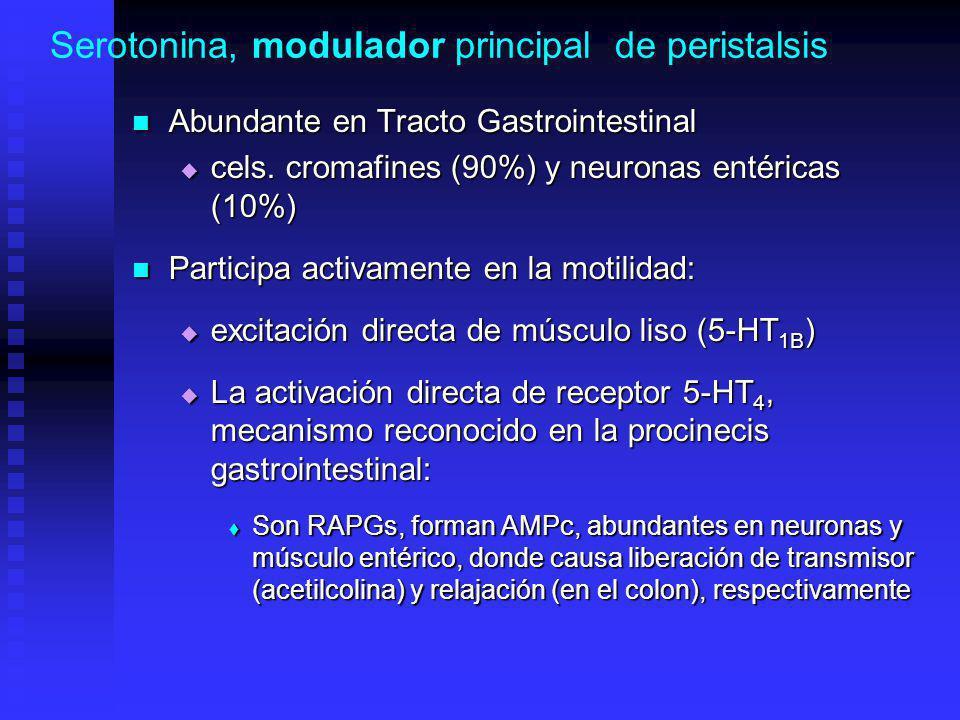 Serotonina, modulador principal de peristalsis