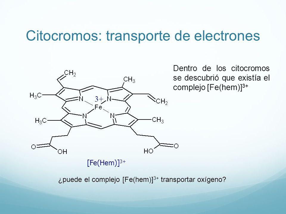 Citocromos: transporte de electrones