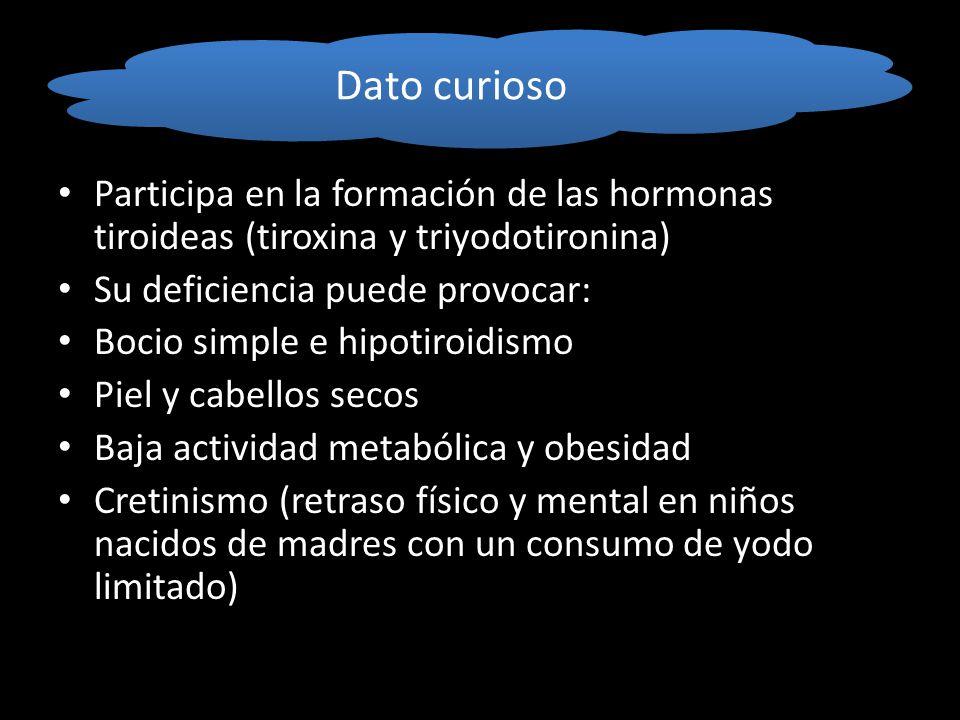 Dato curioso Participa en la formación de las hormonas tiroideas (tiroxina y triyodotironina) Su deficiencia puede provocar: