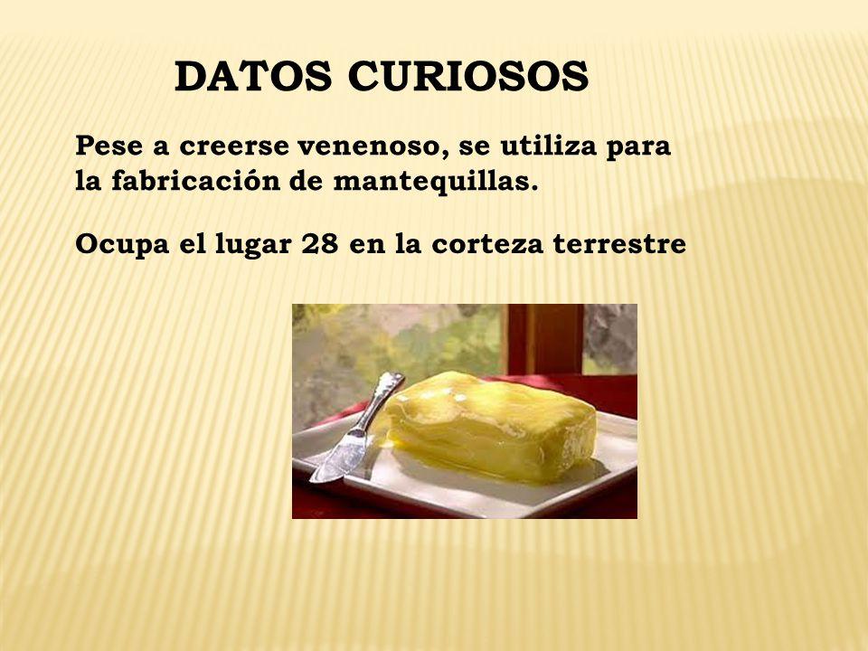 DATOS CURIOSOS Pese a creerse venenoso, se utiliza para la fabricación de mantequillas.