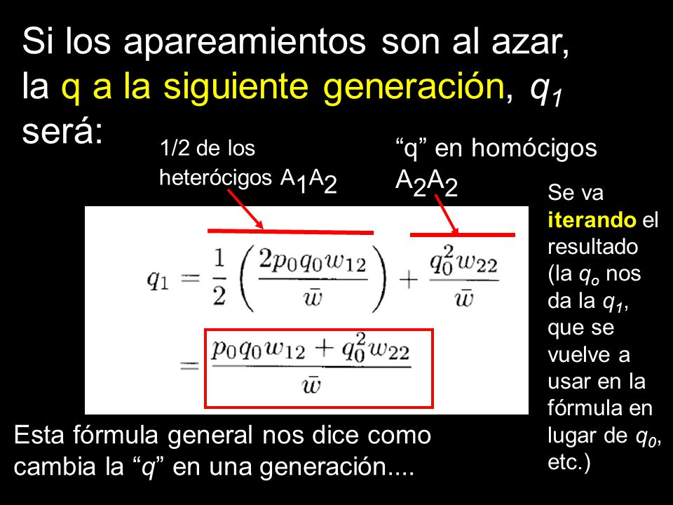 Si los apareamientos son al azar, la q a la siguiente generación, q1