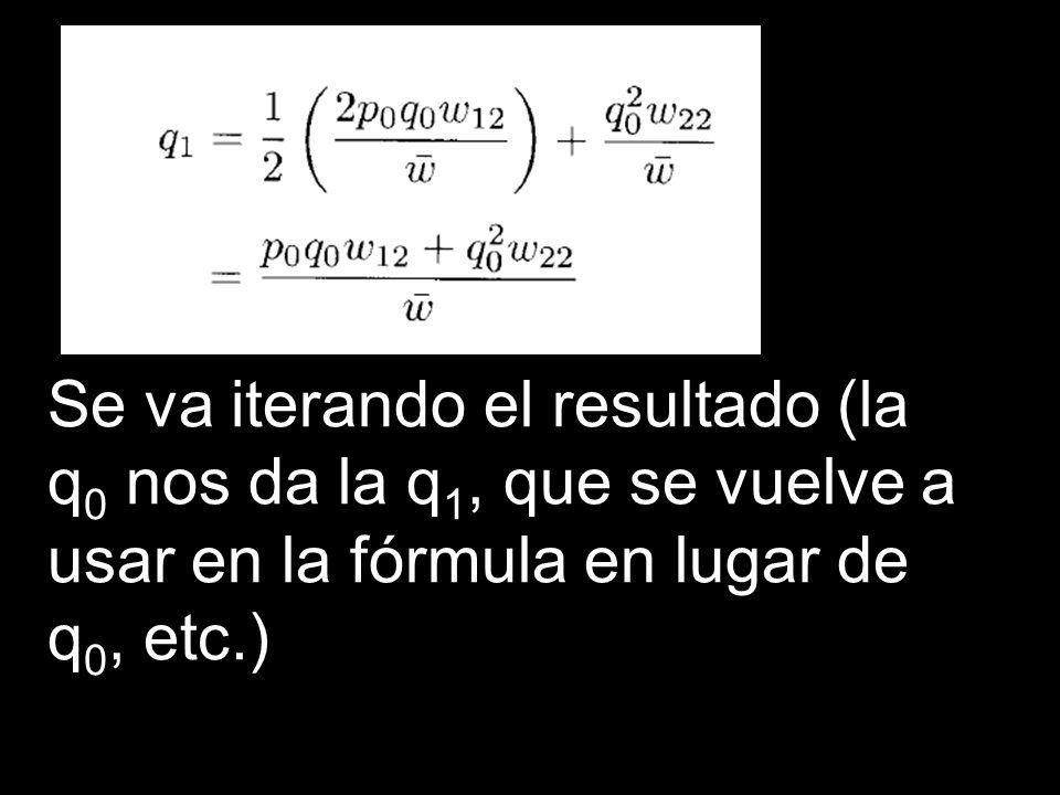 Se va iterando el resultado (la q0 nos da la q1, que se vuelve a usar en la fórmula en lugar de q0, etc.)