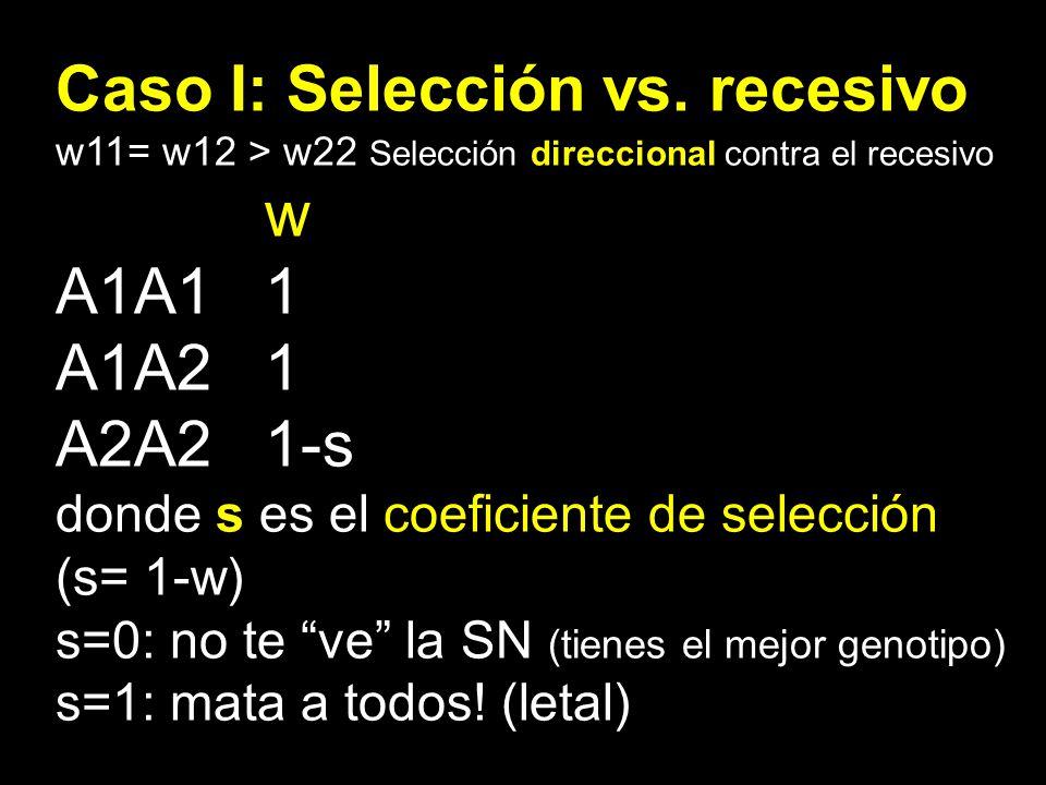 Caso I: Selección vs. recesivo w A1A1 1 A1A2 1 A2A2 1-s