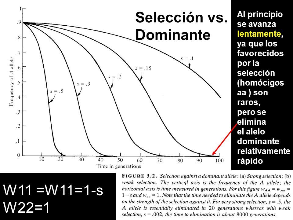 Selección vs. Dominante W11 =W11=1-s W22=1 Al principio