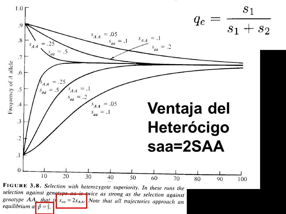 Ventaja del Heterócigo saa=2SAA