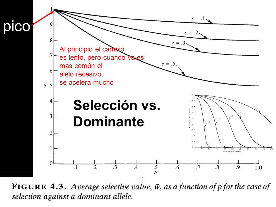 pico Selección vs. Dominante Al principio el cambio