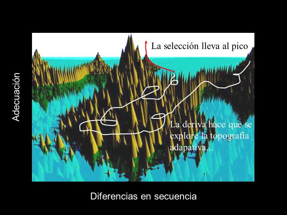 Diferencias en secuencia