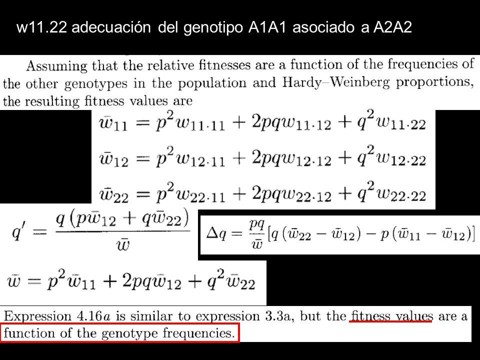w11.22 adecuación del genotipo A1A1 asociado a A2A2