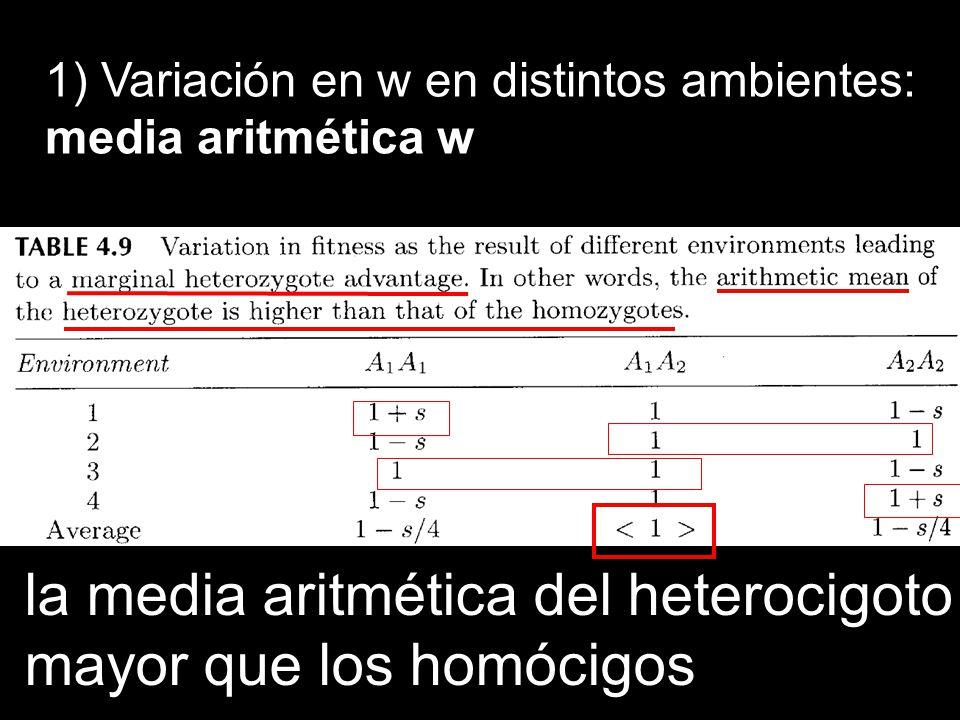 la media aritmética del heterocigoto mayor que los homócigos