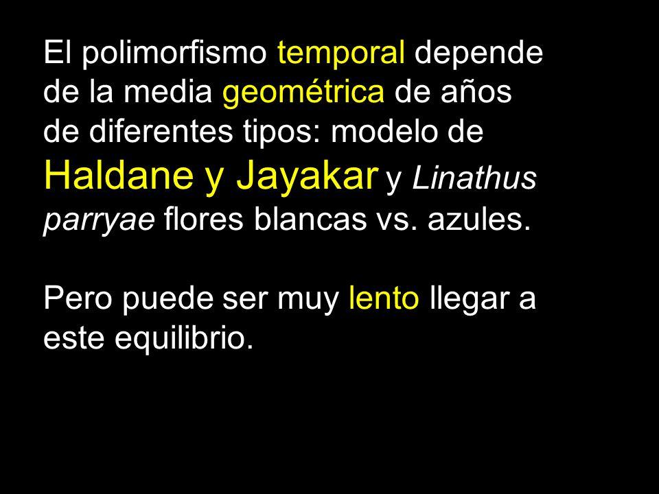 El polimorfismo temporal depende