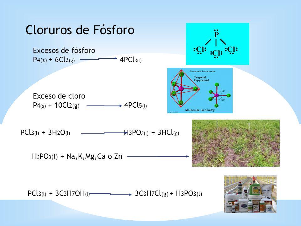 Cloruros de Fósforo Excesos de fósforo P4(s) + 6Cl2(g) 4PCl3(l)